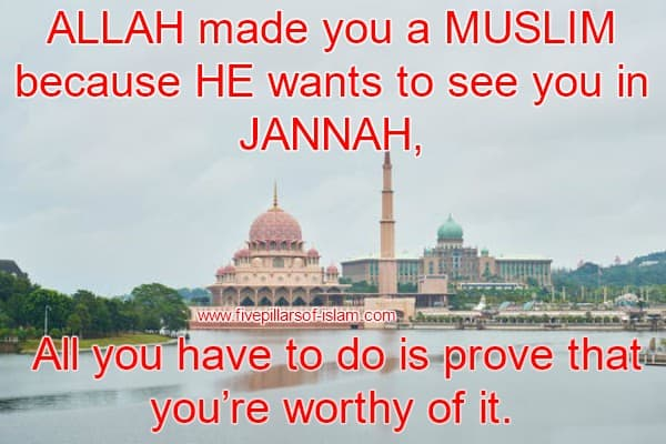 Best Islamic Quotes and sayings