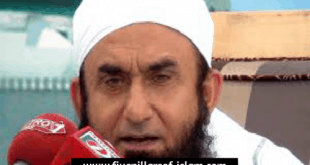 tariq jamee brief introduction